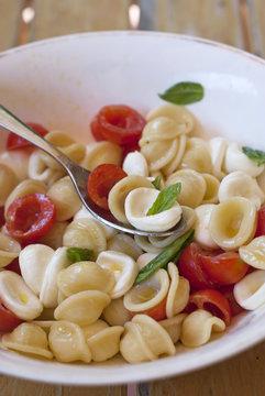 Orecchiette Pasta salad with tomatoes and mozzarella