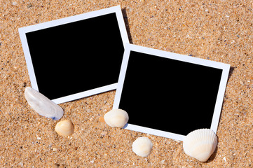Sea shells with photos on sand background.