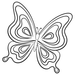 Butterfly, contour