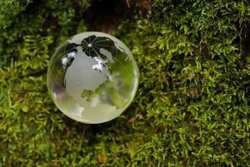 кристально чистый земной шар на фоне зеленого мха
