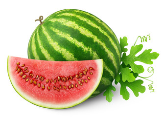isolated watermelon. One whole watermelon writ and a slice isolated on white background