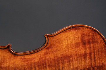 Back side of violin with lots of room for your type.