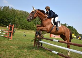 Poster Horseback riding équitation
