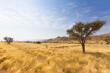 Naukluft Gebirge in Namibia, Afrika