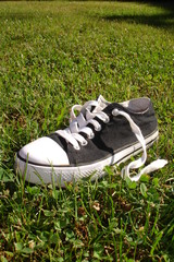 A shoe lost in the grass