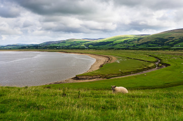 Duddon Estuary from Dunnerholme