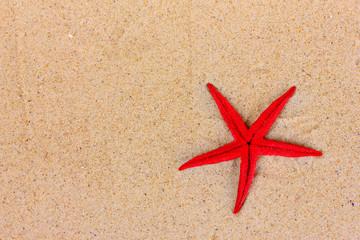 beautiful red starfish on sand