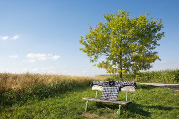 Seating bench with shirt