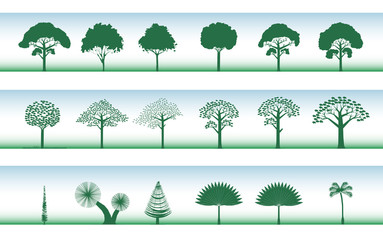 set of different trees, plam, pine..., vector