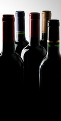 Five bottles of wine in a dark room lit from above.