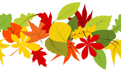 Seamless border with different autumn leaves on white background