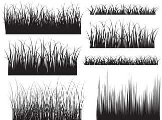 Black Shape Grassline