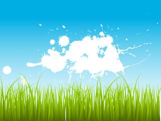Green Leaf Grass On Splashy Background