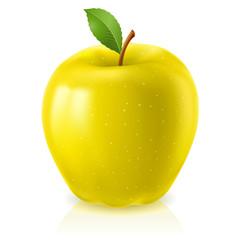 Ripe yellow apple