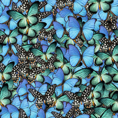 Butterflies Seamless Texture Tile from Photo Originals
