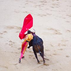 Traditional corrida - bullfighting in spain