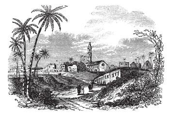 Gaza or Gaza City in Palestine vintage engraving