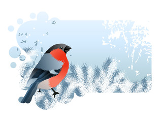 Blue Christmas frame with bullfinch sitting at branch