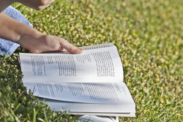 Ragazza legge un libro su un prato
