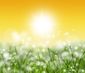spring and nature background