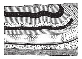 Illustration of coal beds in layers in the ground, vintage engra