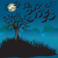 bats flying in the moonlight