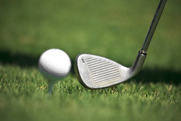 Iron and golf ball against the grass.