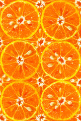Texture of orange fruit background