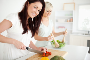 Gorgeous young Women preparing dinner