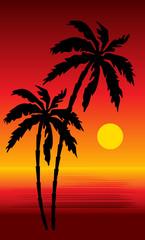 Tropical beach. Sunset. vector, gradient