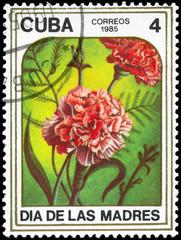 CUBA - CIRCA 1985 Carnations