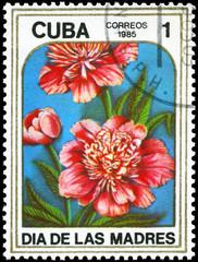 CUBA - CIRCA 1985 Peonies