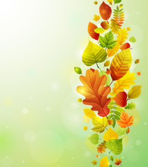 Wall Mural - Autumn background with colorful leaves.