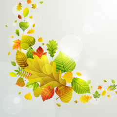 Foto op Canvas Grafische Prints Autumn background