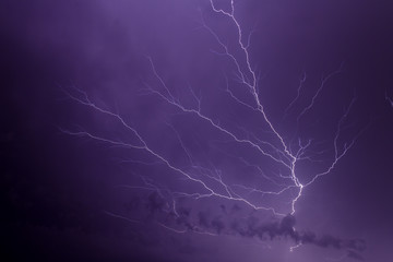 Foto op Canvas Onweer Lightning Bold Forks Many Times in Night Sky