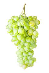 fresh grape fruits isolated on white background
