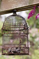 Vogelkäfig mit Katzenfigur als Gartendekoration