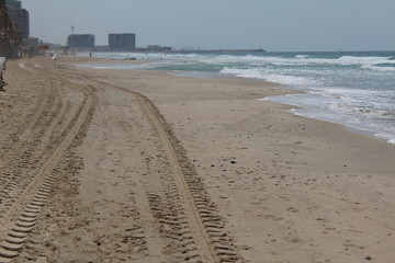 Jeep tracks at the beach