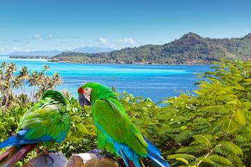 Fotorolgordijn Papegaai Bright parrot against the sea and mountains