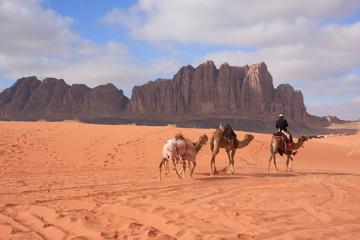 Wadi Rum Beduinenreiter