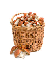 a basket of wild mushrooms