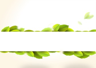 Canvas Print - Banner with green leaves