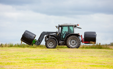 Wall Mural - tractor collecting a roll of haystack in the field