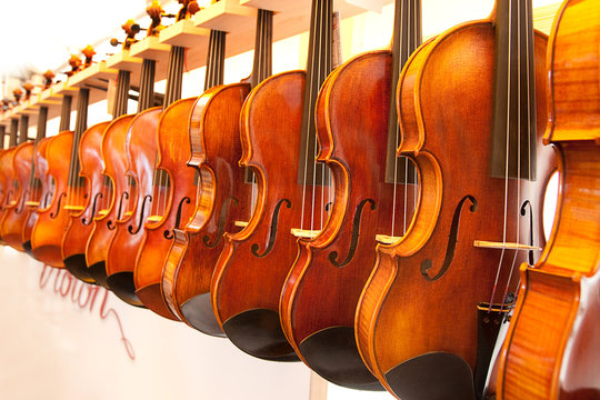 Display of violins