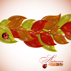 Autumn branches tree with ladybug, vector