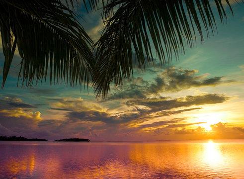 Bliss Hawaii Beach