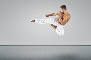 martial arts master Wall mural