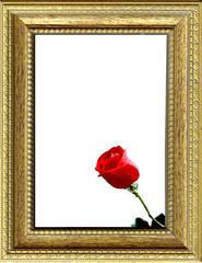 Cornice dorata con rosa rossa