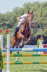 Лошадь перепрыгивающая препятстви