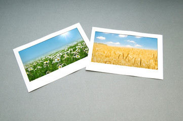 Picture frames with nature photos